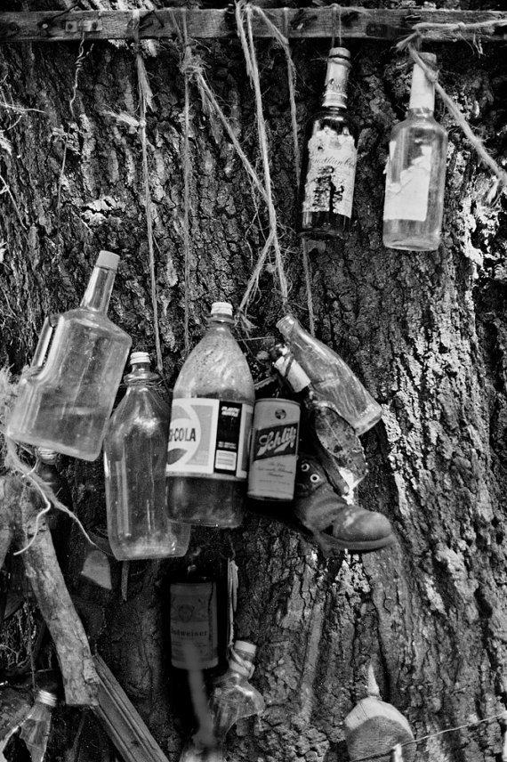 john shepherd - bernard's memory tree with a shoe