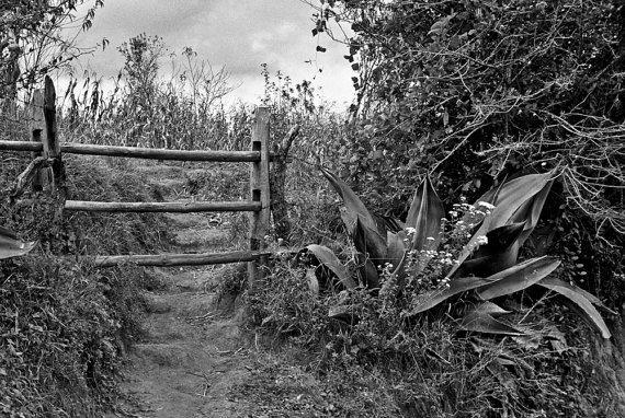 john shepherd - gate and earthen steps - san cristobal mexico