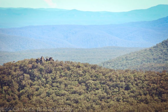 jessica reiss - blue mountains - australia