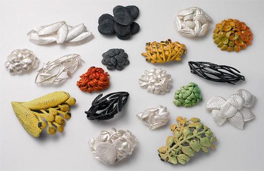 Julie Blyfield - pressed desert plants series
