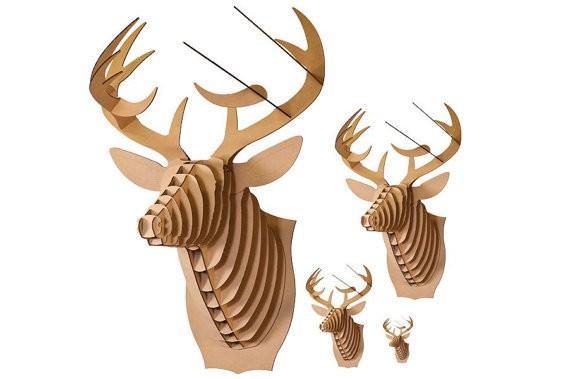 cardboard safari - bucky