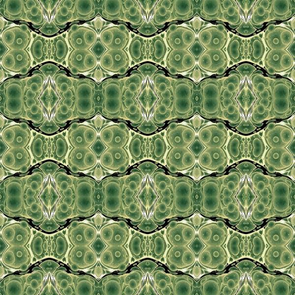 renato crepaldi - green shell