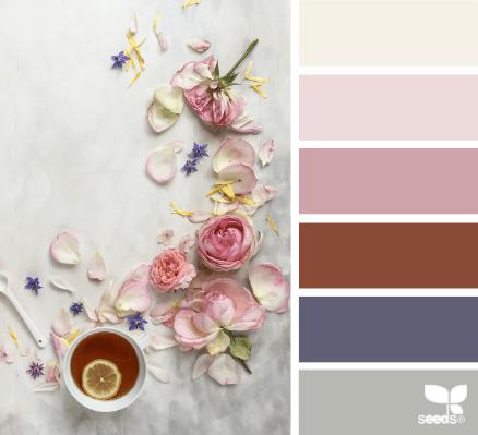 design seeds - color set