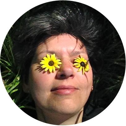 avi daisies circle crop