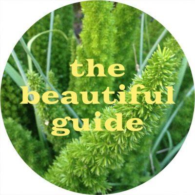 1 beautiful guide