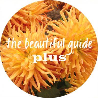 1 beautiful guide plus