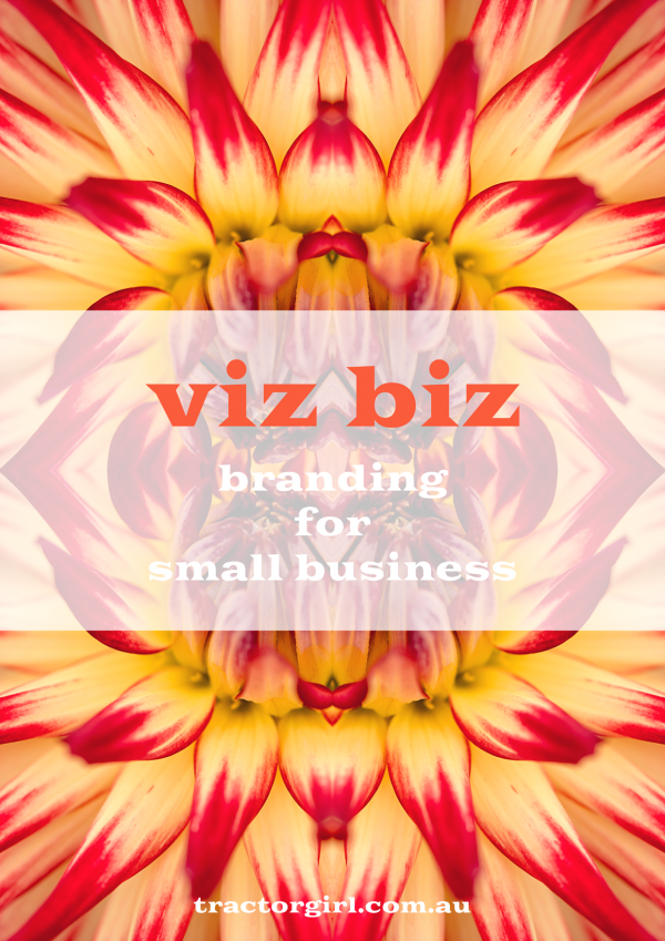 viz biz the ebook - a guide to branding for small business