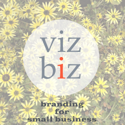 viz biz the e-book - small business branding