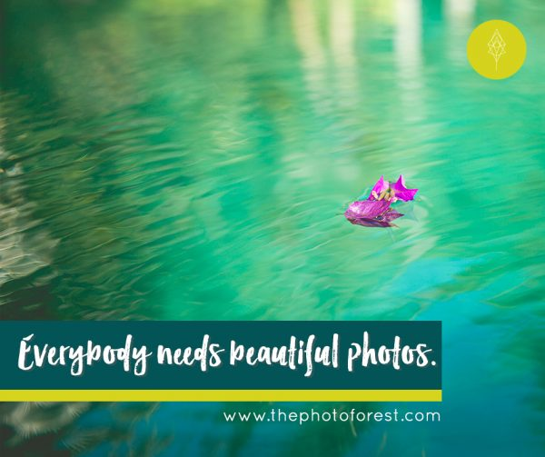 everybody-needs-beautiful-photos