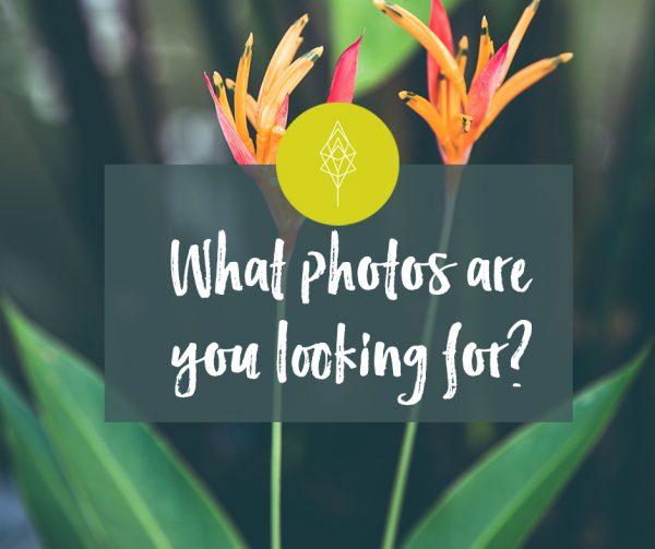 what-photos