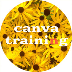 canva training2