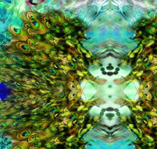 sandra darling - aqua plume (detail)