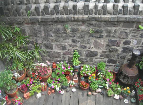 sandi pierantozzi - backyard garden