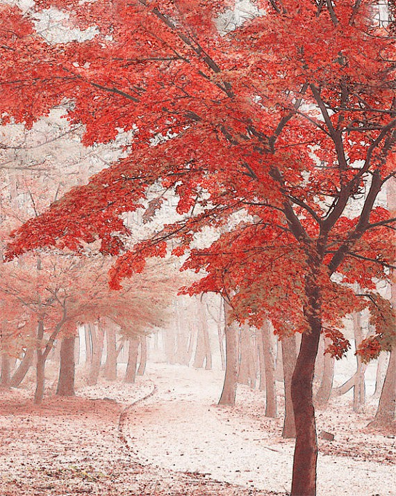 moongardenart - autumn tree