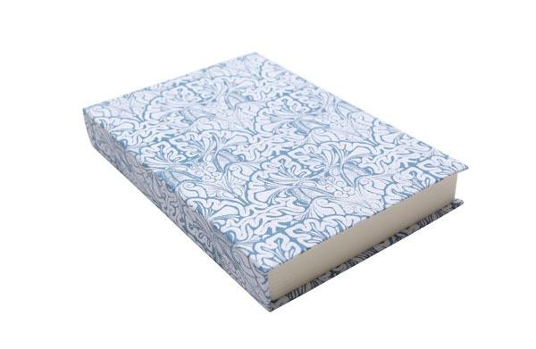 fanny shorter - Blue Brains - Notebook