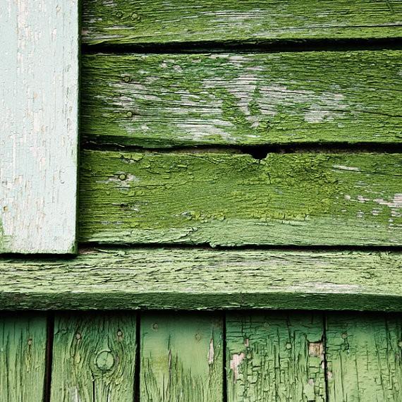 bialakura - green wooden wall