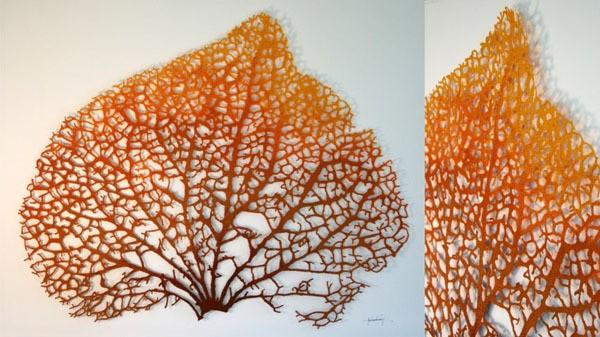 meredith woolnough - leaf skeleton (hydrangea) - land series - 2012