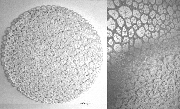 meredith woolnough - star coral circle in white - ocean series - 2012