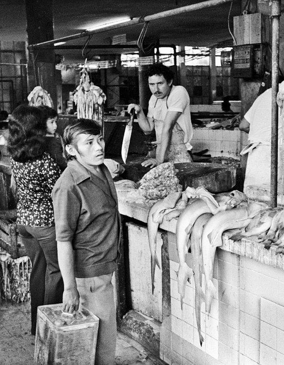 john shepherd - the shark vendor - merida - 1977