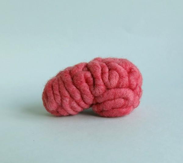 your organ grinder - brain