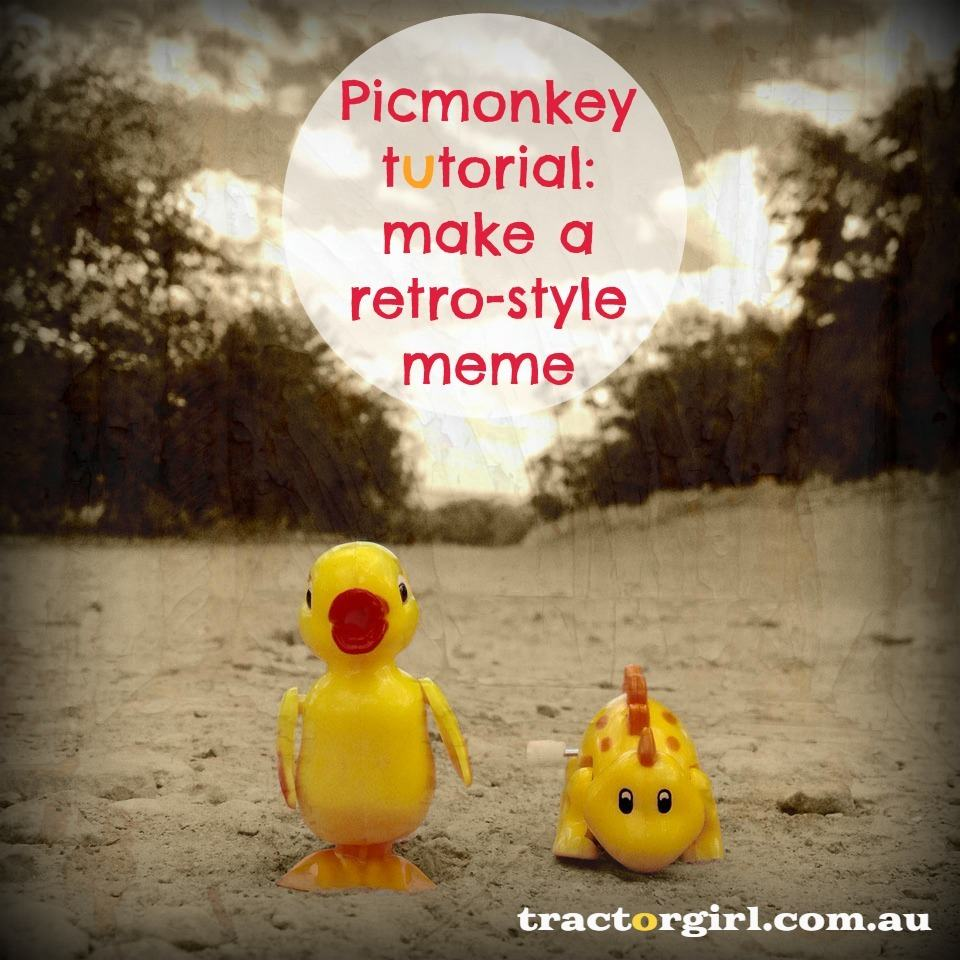 Small biz how-to : Using Picmonkey to make a retro-style meme for your blog