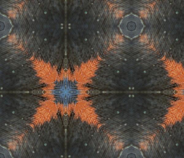 feather rishi - starry night