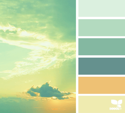 design seeds - color heaven