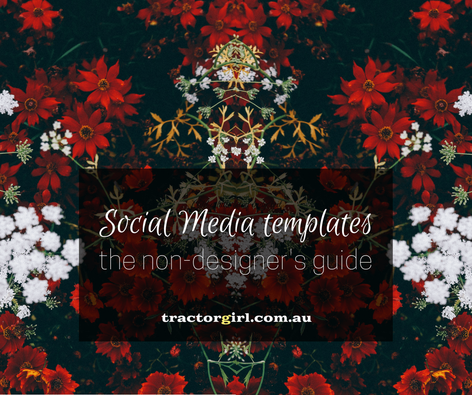 How to create a beautiful social media template in Canva