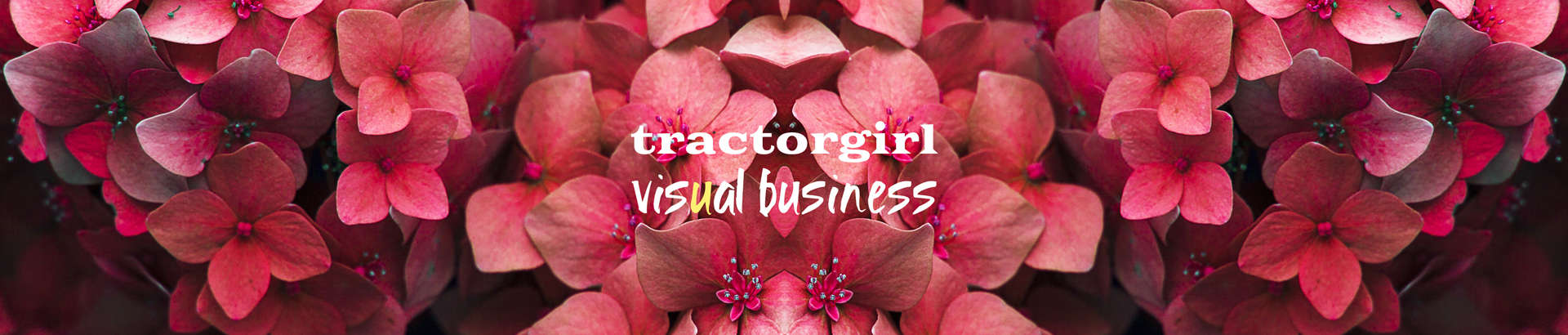 tractorgirl: visual business: small business branding