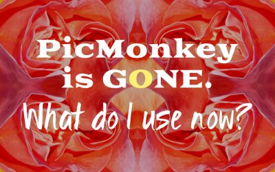 Picmonkey is gone – what do I use now?