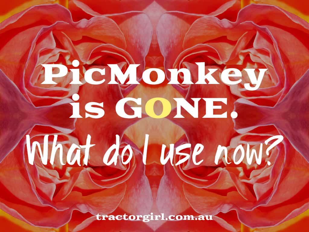 what's the alternative now picmonkey is gone