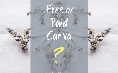Should I use Free or Paid Canva?